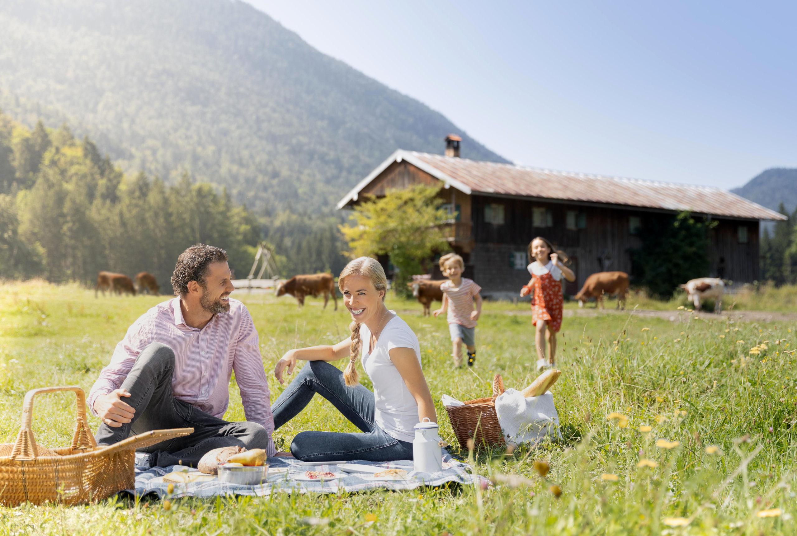 Bauernhof-Effekt hilft gegen Heuschnupfen